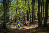 Mountain biking women and man riding on bikes at sunset mountains forest landscape. Couple cycling MTB enduro flow trail track. Outdoor sport activity. - 194006234