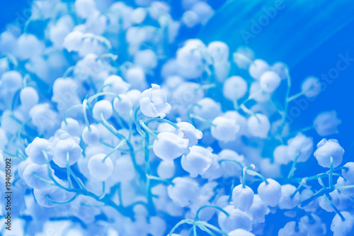 Fotobehang Lelietjes van dalen Spring landscape. flowers lily of the valley