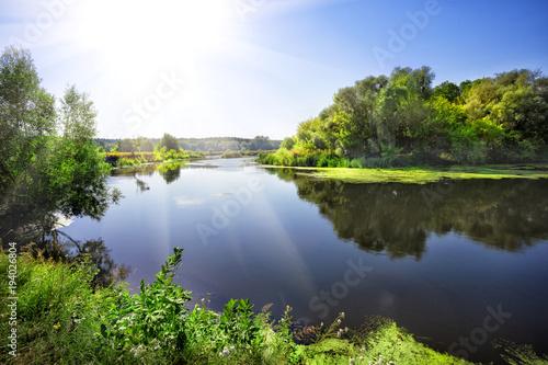 Słoneczny dzień na rzece z zielonymi drzewami na brzeg