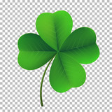Vector four-leaf shamrock clover icon. Lucky fower-leafed symbol of Irish beer festival St Patrick's day. 3d realistic vector green grass clover isolated on transparent background - 194037270