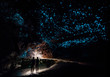 Couple under New Zealand Glow Worm Sky in Waipu Cave
