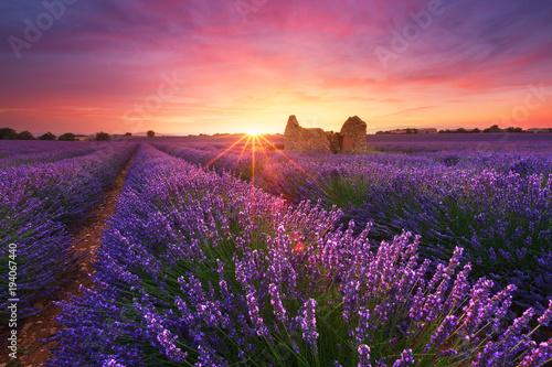 Aluminium Lavendel Lavande, Provence, France