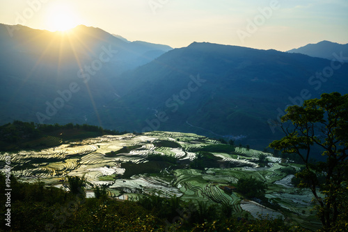Deurstickers Rijstvelden Terraced rice field in water season by sunset period, the time before starting grow rice in Y Ty, Lao Cai province, Vietnam