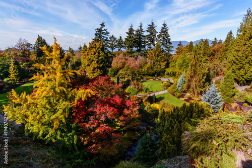 Fotobehang Canada arboretum with colorful trees and bushes, a green lawn, a bridge, a stream, mountains