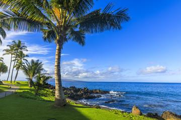 Wailea Beach near Kihei, Maui, Hawaii
