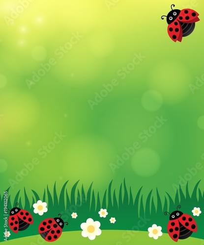 Foto op Canvas Voor kinderen Spring background with ladybugs 2