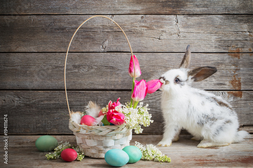 rabbit with Easter eggs on wooden background - 194111674