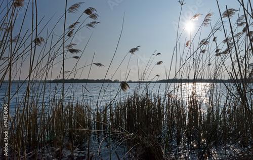 Aluminium Zwart Réserve naturelle de l'étang de Cousseau en Gironde