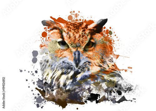 Fotobehang Uilen cartoon owl with abstract paint on white background