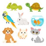 set of home animal pet - 194137606