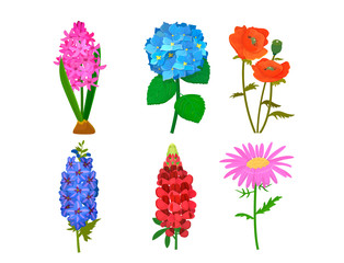 Beautiful vector flower bouquet design decoration nature design floral flower drawing leaf blossom botanical spring woman gift illustration