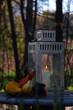 Leinwandbild Motiv Laterne mit Zierkürbis