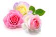 Blumen 929