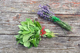 Fresh mint and lavender medical herbs bunch