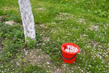 Red bucket in spring and white apple tree petals