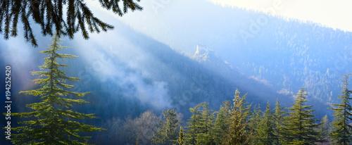 Aluminium Lente art mountain forest landscape; peaceful spring morning;