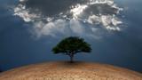 Tree of life - 194254827