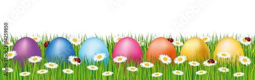 Colorful Easter eggs hidden in a field. Spring vector banner with daisies and ladybugs.
