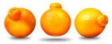 Collection of mandarin or tangerine citrus fruit isolated on white background with shiny reflections
