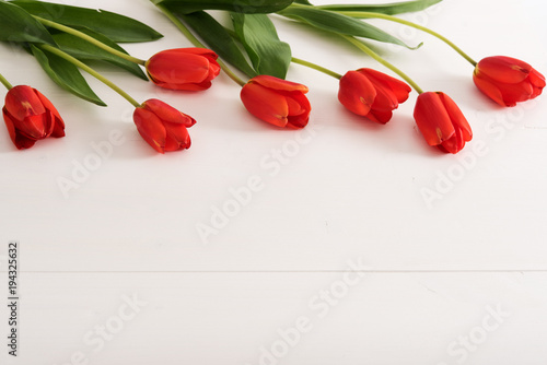 Fototapeta Colorful tulips on white wooden table with copy space