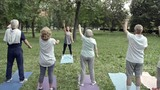 Tilt down shot of six elderly people standing on yoga mats in park doing stretching exercises for arms with trainer - 194329240