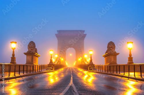 Foto op Canvas Boedapest Chain bridge at night Budapest