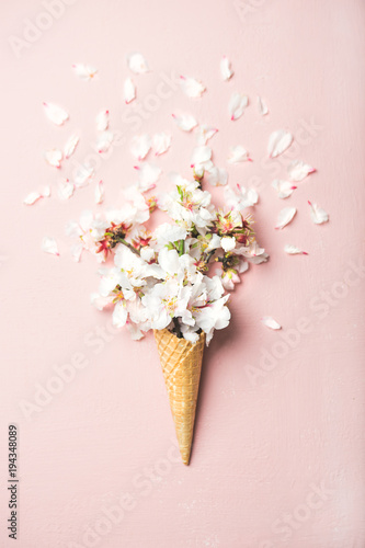 Flat-lay of waffle sweet cone with white almond blossom flowers over pastel light pink background, top view. Spring or summer mood concept - 194348089