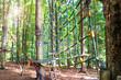 costruzioni di legno nel bosco per percorso sugli alberi - 194394451