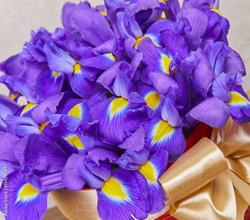 Fotobehang Iris Easter bouquet
