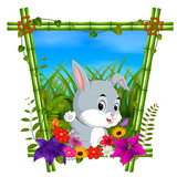 cute rabbit in bamboo frame with flower scene