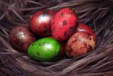Easter Egg - 194410455