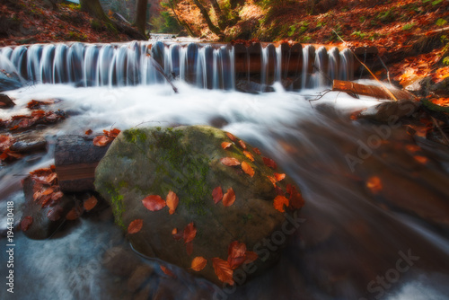 Plexiglas Grijze traf. Amazing autumn scenery with yellow leaves on small branch above stream of mountain waterfall. Beautiful nature background.