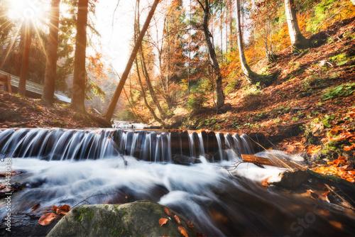 Niesamowita jesień sceneria z żółtymi liśćmi na małej gałąź nad strumień halna siklawa. Piękny charakter tło.