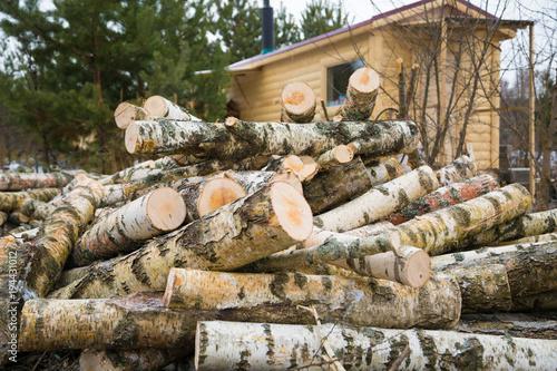 Foto op Canvas Brandhout textuur Birch logs, prepared for firewood