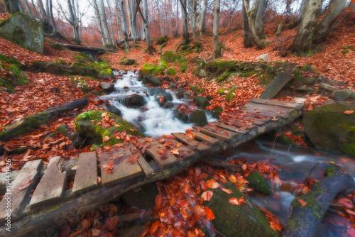 Fotobehang Herfst Autumn waterfall bridge