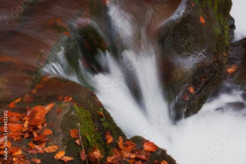 mały wodospad w lesie jesienią