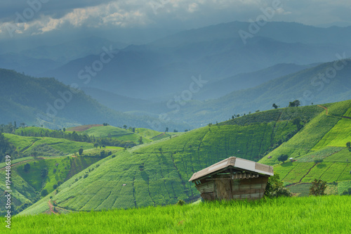 Deurstickers Rijstvelden landscape of rice terrace and mountain with little house in farm