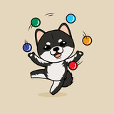 Cute cartoon character design Black Shiba Inu dog ,playing with balls like a juggler