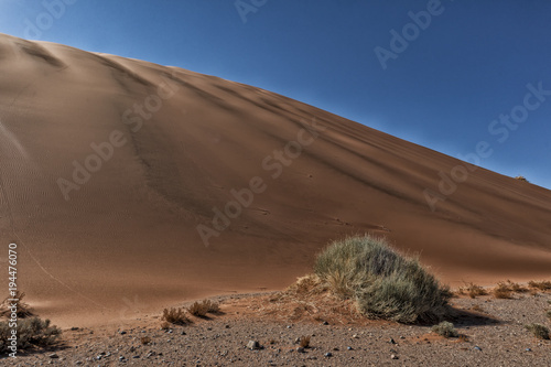 Plexiglas Diepbruine landscape with shrubs and red dunes in the Namibia desert. Sossusvlei.