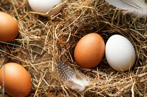 Frische braune und weiße Eier im Stroh - 194476695
