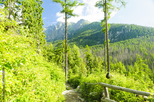 Deurstickers Lime groen Tatra mountains in summer