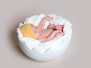 Little baby sleeping in egg