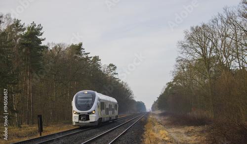 Fotobehang Spoorlijn Szynobus pędzi przez las