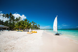 Palm tree and tropical beach in Punta Cana, Dominican Republic - 194513292