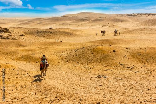 Aluminium Kameel Travel background. Camels in the desert