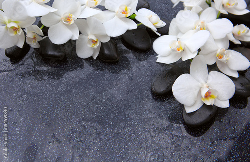 Foto op Canvas Spa Spa background with white orchid and black stones.