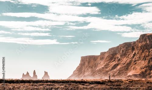 Fotobehang Wit Iceland landscape - rock formations