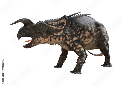 Fototapeta 3D Rendering Dinosaur Einiosaurus on White
