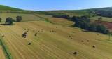 Harvest field aerial - 194617813
