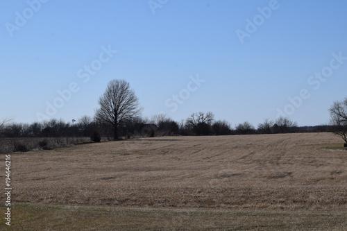 Fotobehang Cappuccino Farm Field